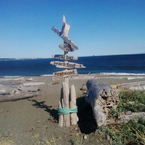 A picture of the Pacific Ocean looking south from Esquimalt Lagoon, the site of a migratory bird sanctuary. The photo contains a sign made from driftwood with directions pointing to Fisgard Lighthouse, Royal Bay, and Colwood.